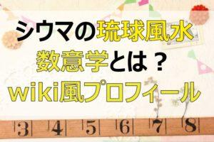 シウマ_琉球風水_数意学_wiki_プロフィール_01
